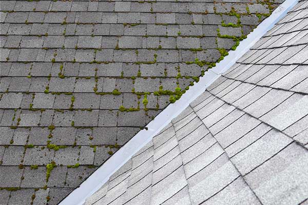 Stunning before and after roof cleaning